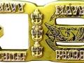 Navy_Chief_DDG_special die shape_challenge coin